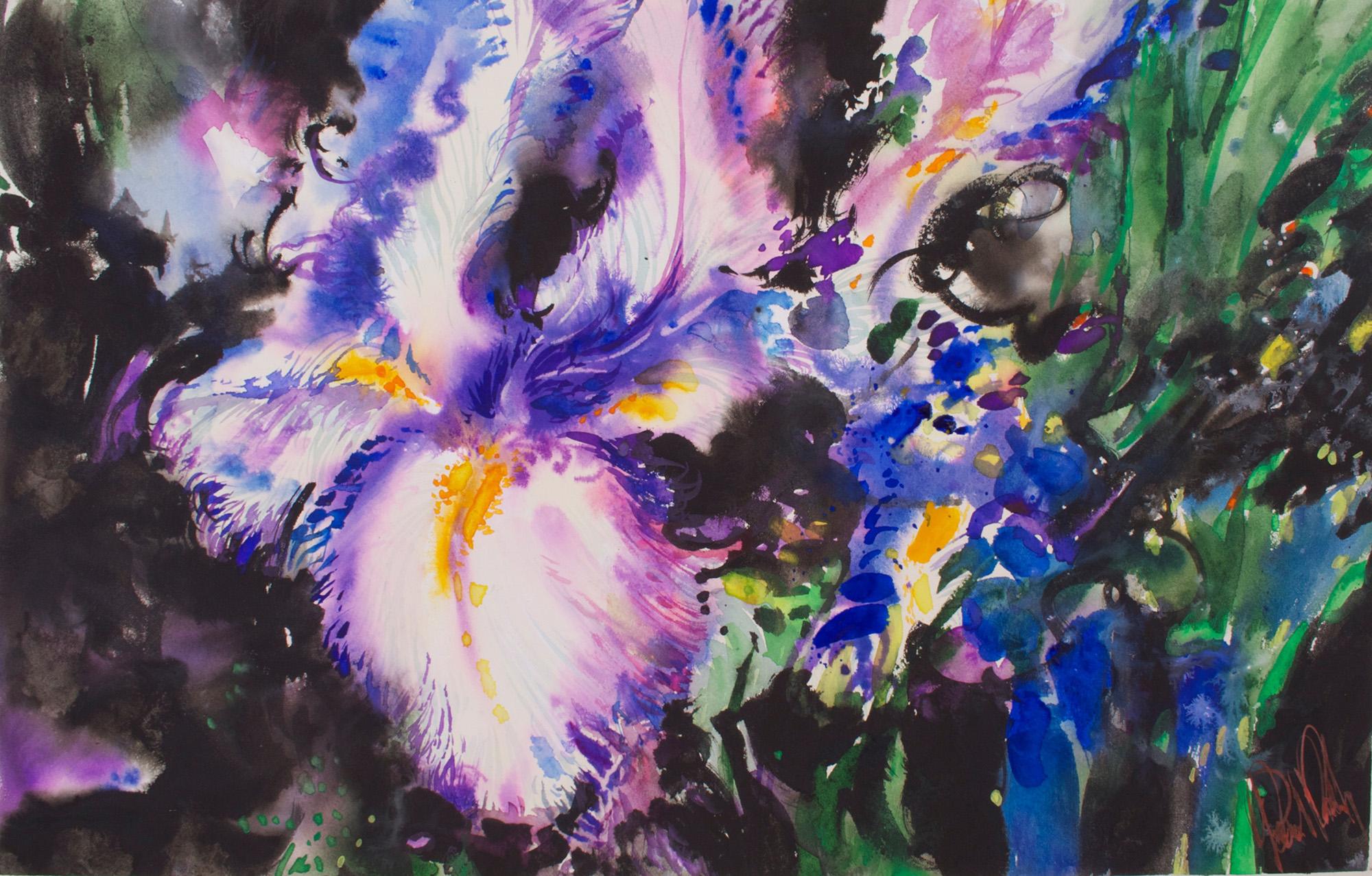 Iris, Night 19 x 28 cms